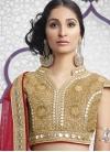 Dignified Lace Work Designer A Line Lehenga Choli - 2