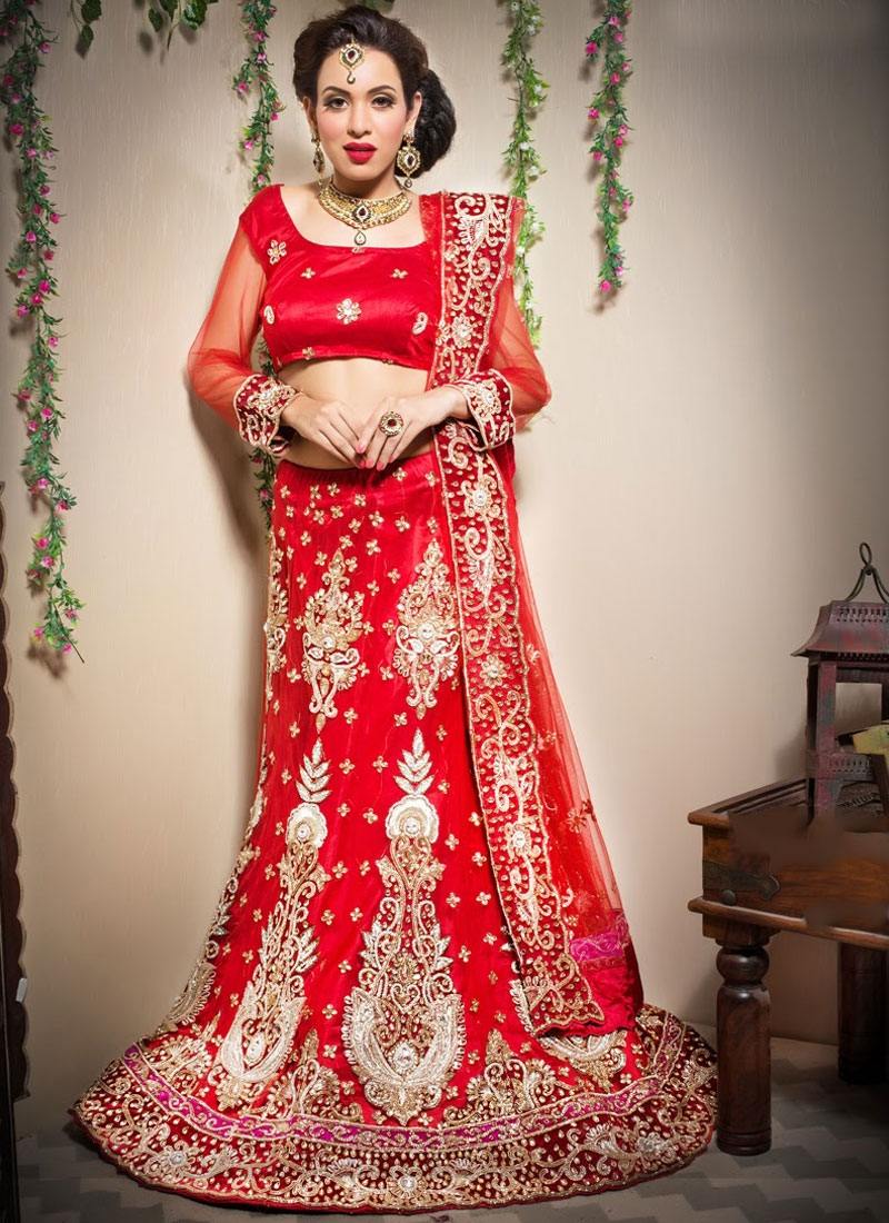 Heavenly Net Trendy Lehenga Choli